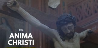 The Anima Christi catholic basic prayer vatican site jesus cross