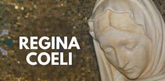 Regina Coeli catholic marian prayer vatican site